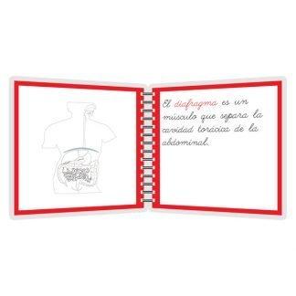 Aparato digestivo - libro