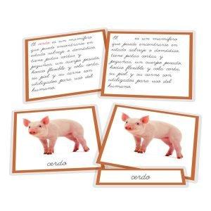 El cerdo y sus derivados