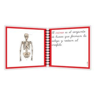 Huesos - libro