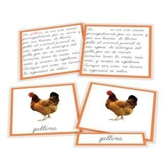 La gallina y sus derivados