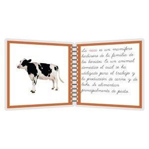 La vaca y sus derivados