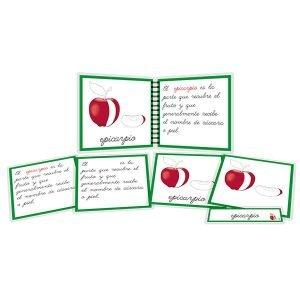 Partes del fruto - libro y nomenclatura