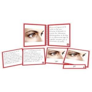 Partes del ojo - libro y nomenclatura
