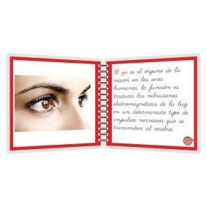 Partes del ojo - libro