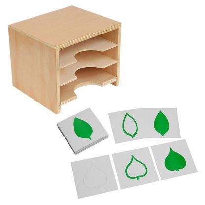 Tarjetas de hojas y gabinete