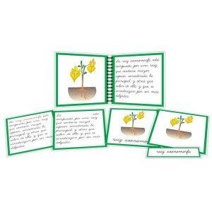 Tipos de raíz - libro y nomenclatura